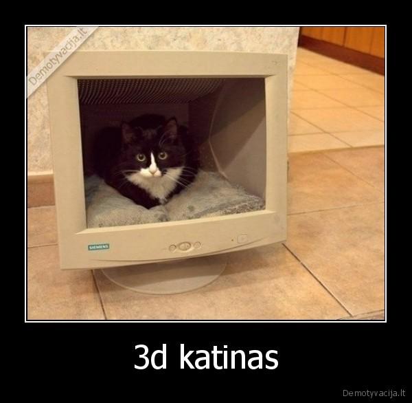 3d katinas
