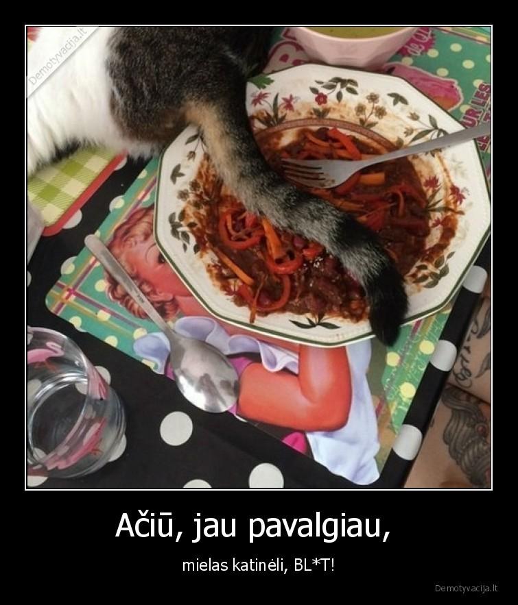 Aciu jau pavalgiau mielas katineli BLT