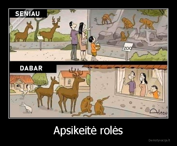 Apsikeite roles