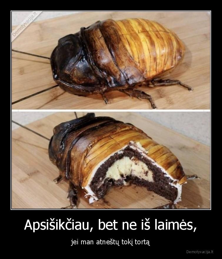 Apsisikciau bet ne is laimes jei man atnestu toki torta