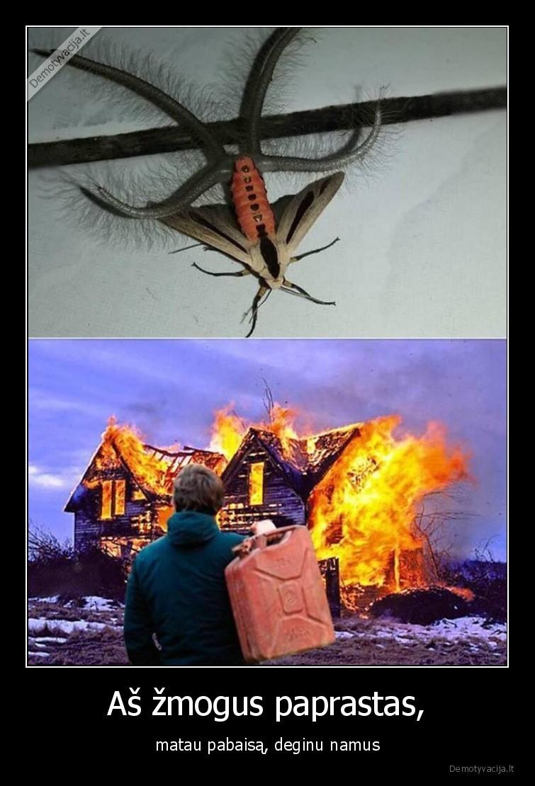 As zmogus paprastas matau pabaisa deginu namus