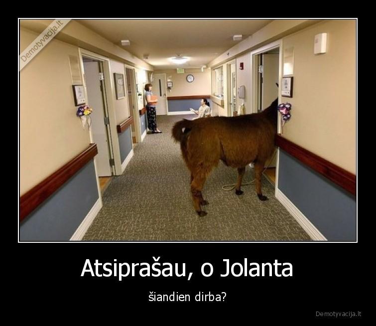 Atsiprasau o Jolanta siandien dirba
