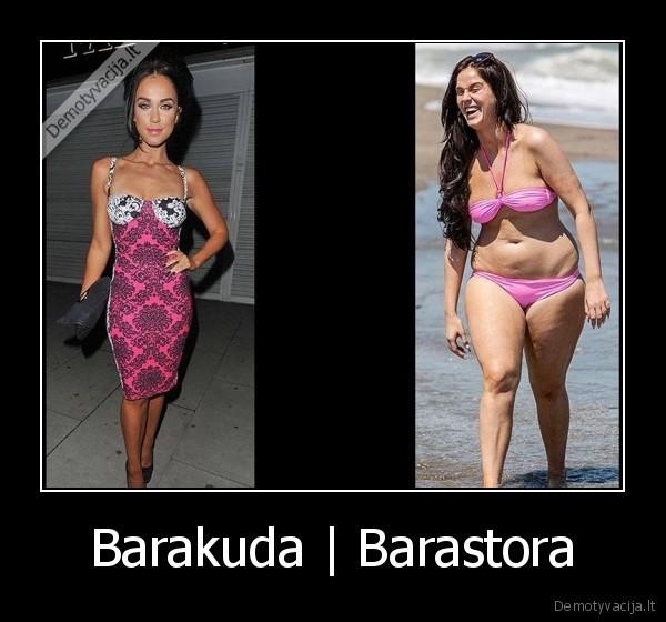 Barakuda Barastora