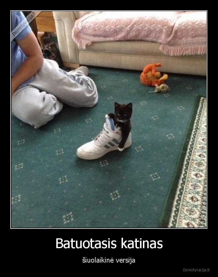 Batuotasis katinas siuolaikine versija