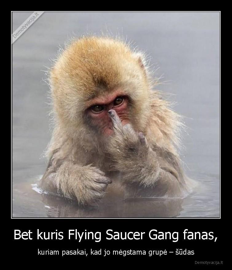 Bet kuris Flying Saucer Gang fanas kuriam pasakai kad jo megstama grupe sudas