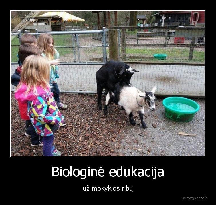 Biologine edukacija uz mokyklos ribu