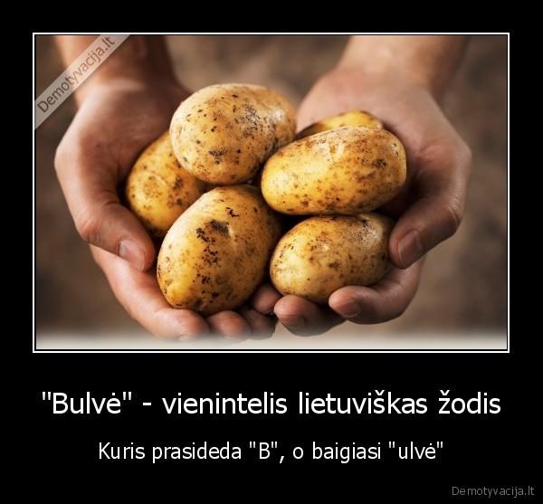 Bulve vienintelis lietuviskas zodis Kuris prasideda B o baigiasi ulve