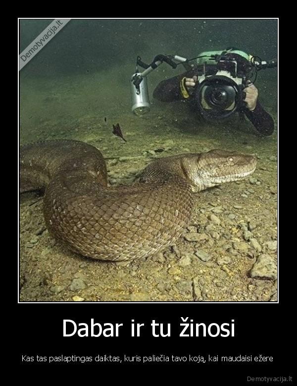 Dabar ir tu zinosi Kas tas paslaptingas daiktas kuris paliecia tavo koja kai maudaisi ezere