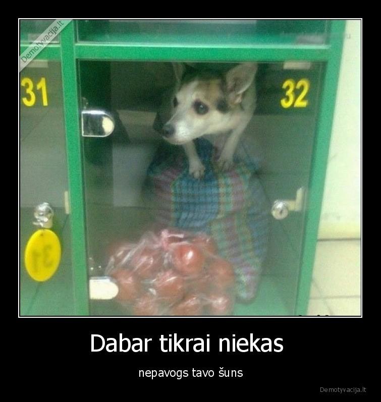 Dabar tikrai niekas nepavogs tavo suns