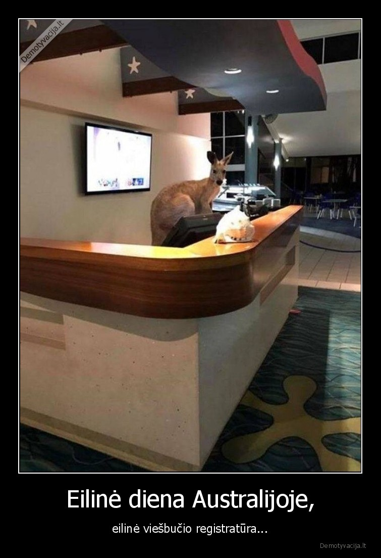 Eiline diena Australijoje eiline viesbucio registratura