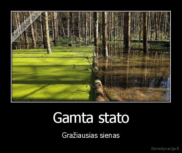 Gamta stato Graziausias sienas