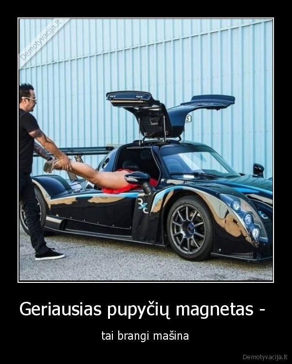 Geriausias pupyciu magnetas tai brangi masina