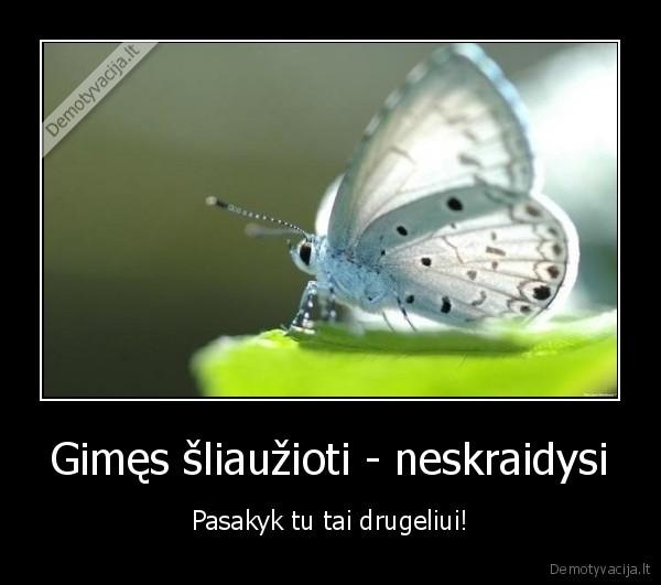 Gimes sliauzioti neskraidysi Pasakyk tu tai drugeliui
