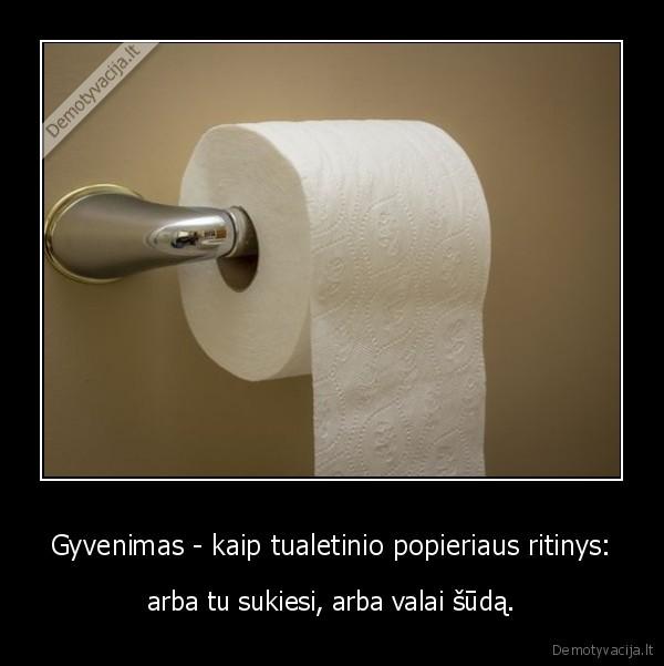 Gyvenimas kaip tualetinio popieriaus ritinys arba tu sukiesi arba valai suda