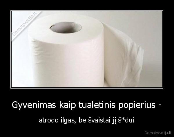 Gyvenimas kaip tualetinis popierius atrodo ilgas be svaistai ji sdui