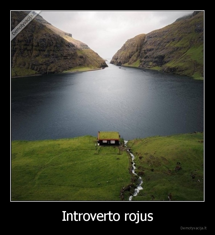 Introverto rojus