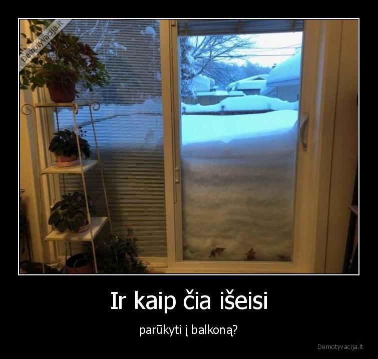 Ir kaip cia iseisi parukyti i balkona