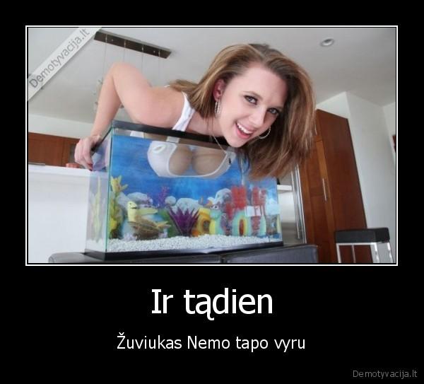 Ir tadien zuviukas Nemo tapo vyru