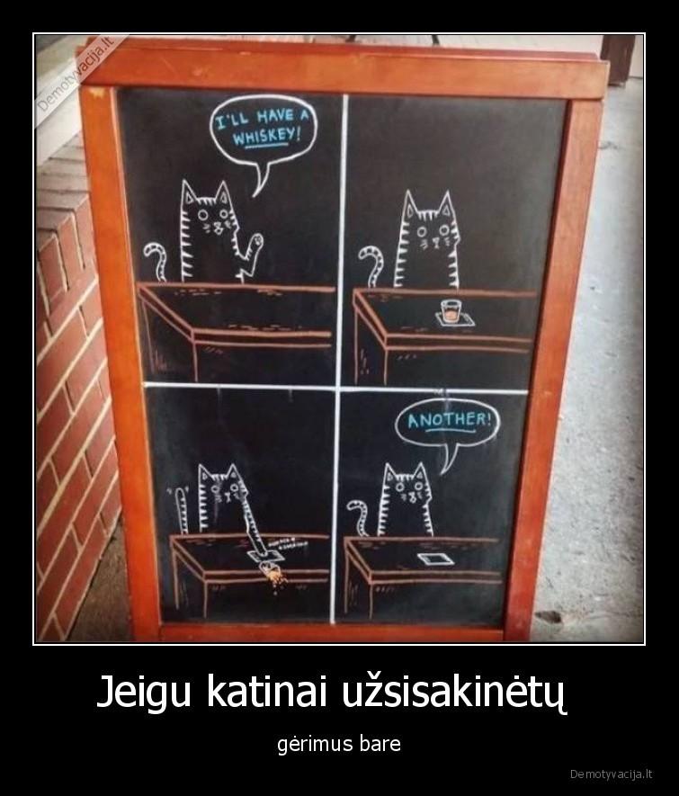 Jeigu katinai uzsisakinetu gerimus bare