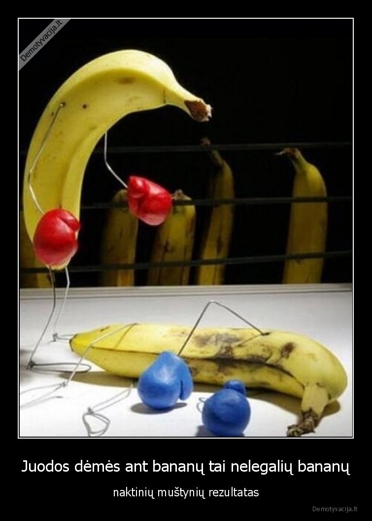 Juodos demes ant bananu tai nelegaliu bananu naktiniu mustyniu rezultatas