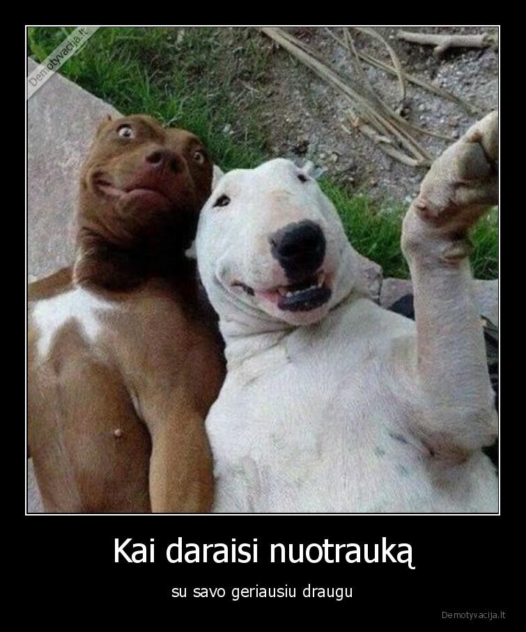 Kai daraisi nuotrauka su savo geriausiu draugu
