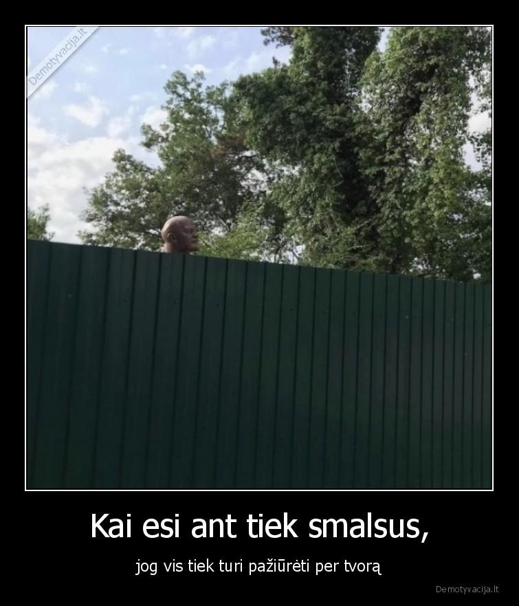 Kai esi ant tiek smalsus jog vis tiek turi paziureti per tvora