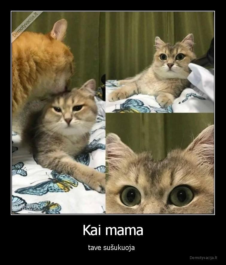 Kai mama tave susukuoja
