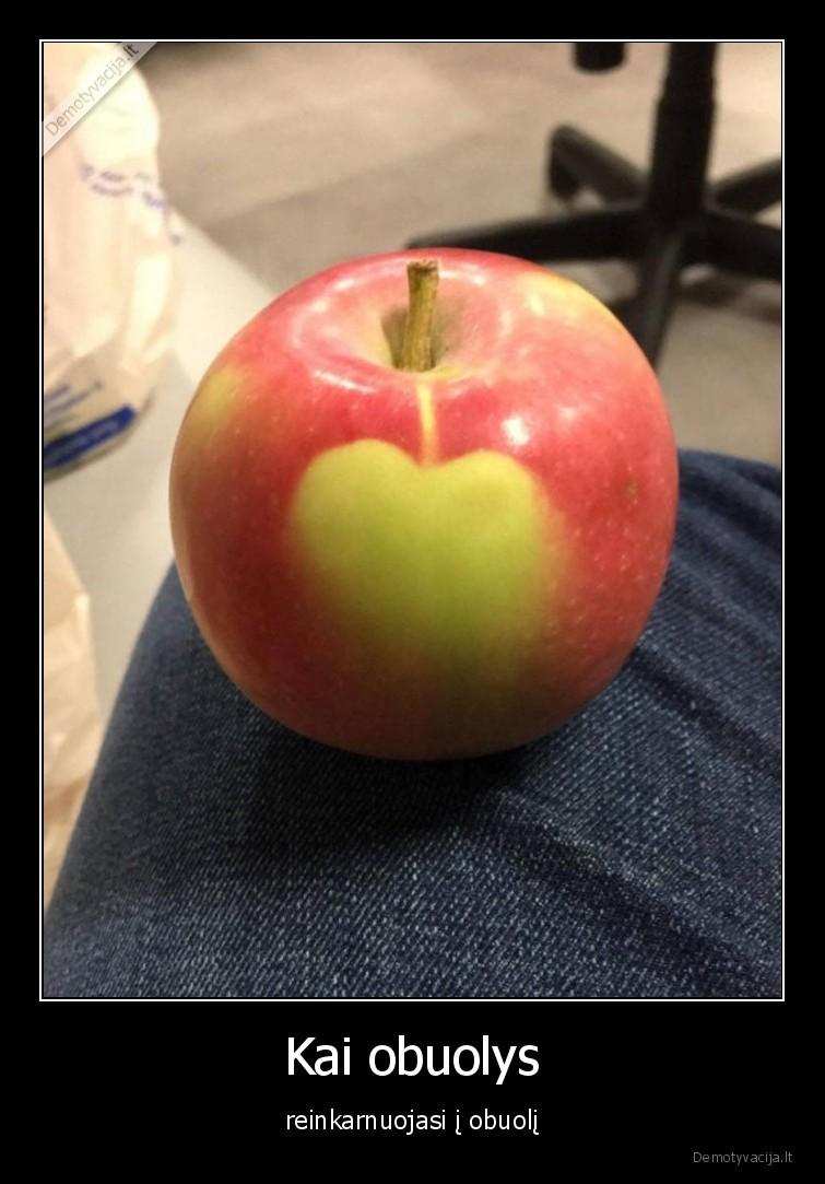 Kai obuolys reinkarnuojasi i obuoli