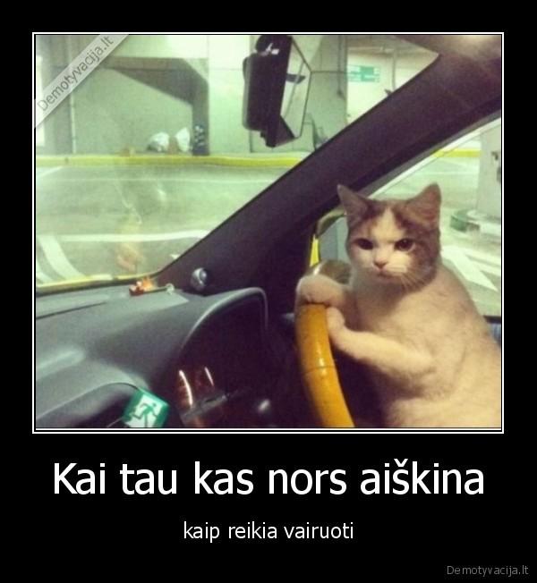 Kai tau kas nors aiskina kaip reikia vairuoti