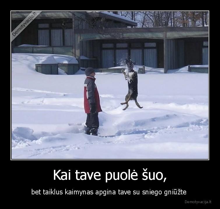 Kai tave puole suo bet taiklus kaimynas apgina tave su sniego gniuzte