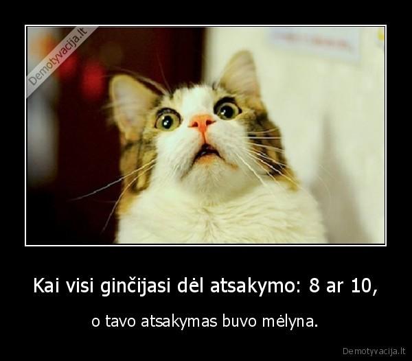 Kai visi ginčijasi dėl atsakymo: 8 ar 10,..