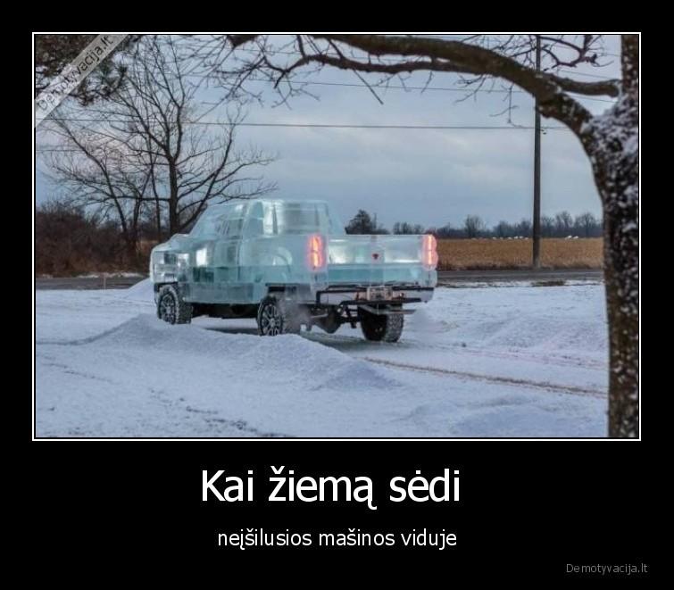Kai ziema sedi neisilusios masinos viduje