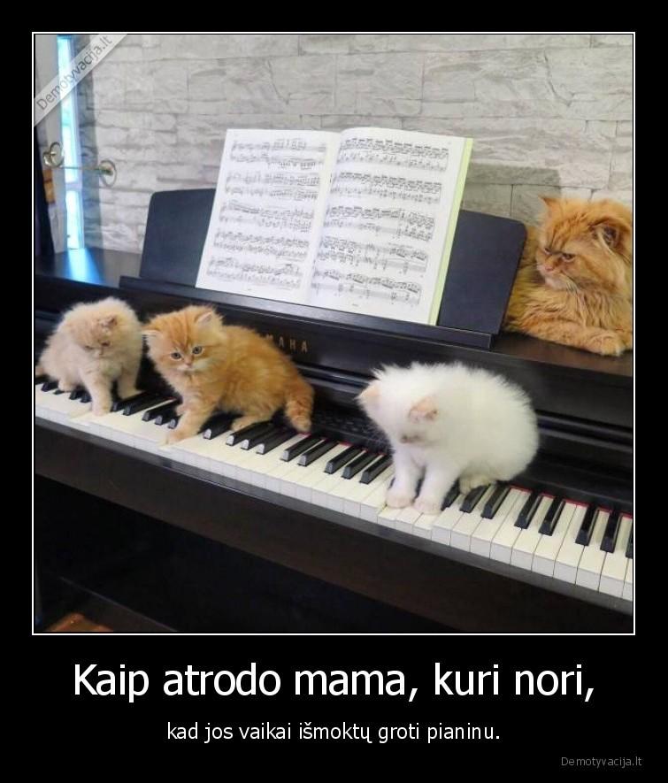 Kaip atrodo mama kuri nori kad jos vaikai ismoktu groti pianinu