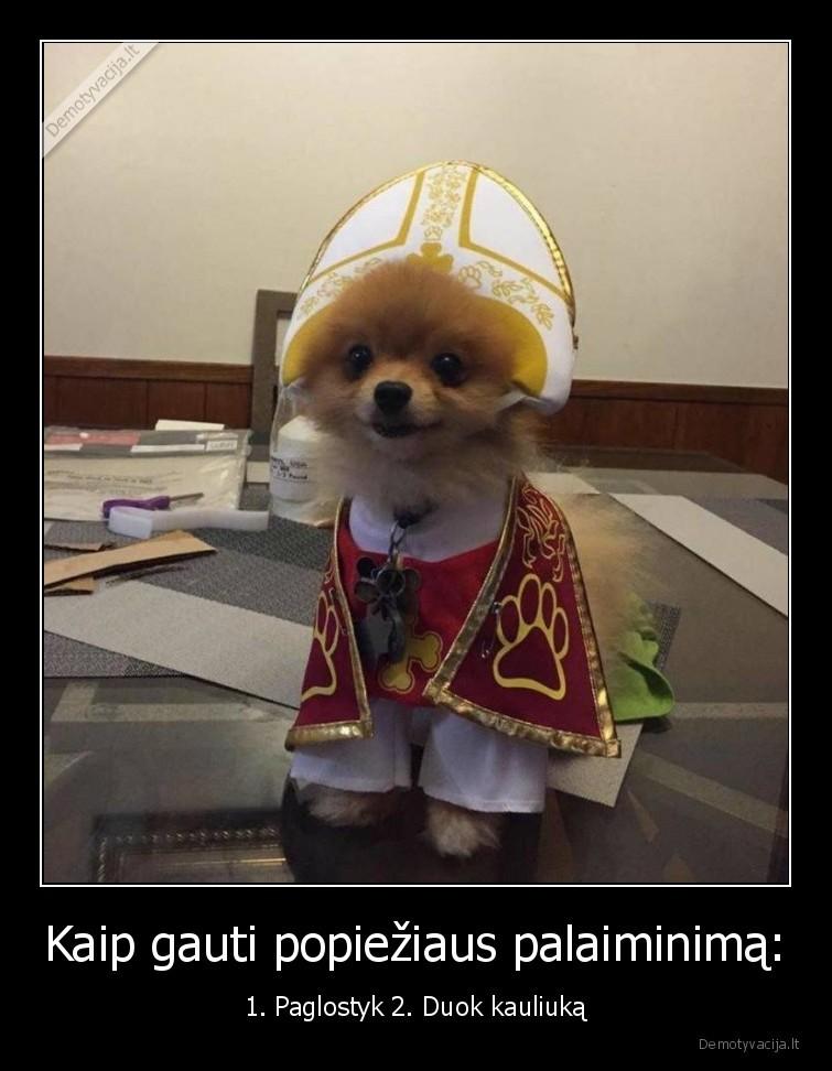 Kaip gauti popieziaus palaiminima 1. Paglostyk 2. Duok kauliuka