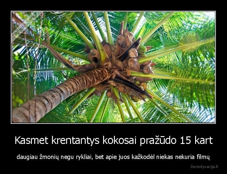 Kasmet krentantys kokosai prazudo 15 kart daugiau zmoniu negu rykliai bet apie juos kazkodel niekas nekuria filmu