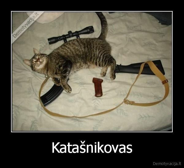 http://www.demotyvacijos.lt/media/demotivators/demotyvacija.lt_Katasnikovas-_13371586394.jpg