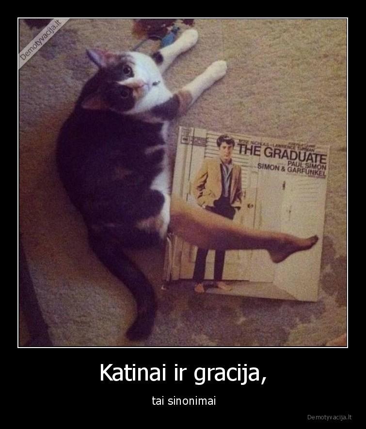 Katinai ir gracija tai sinonimai