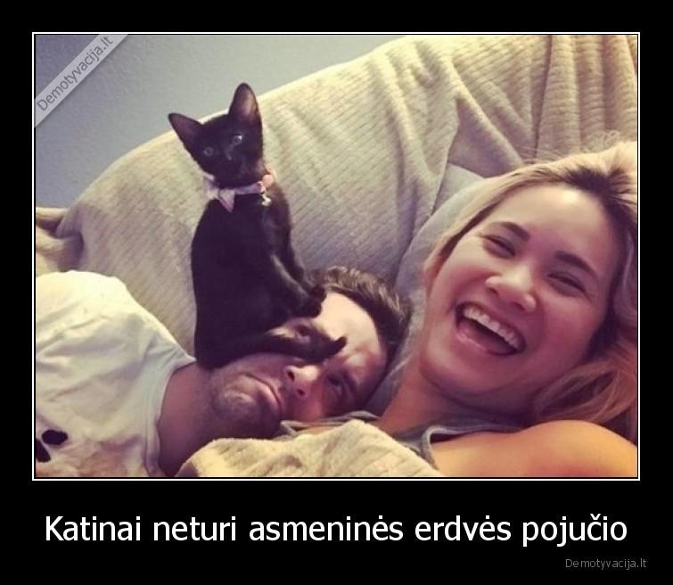 Katinai neturi asmenines erdves pojucio