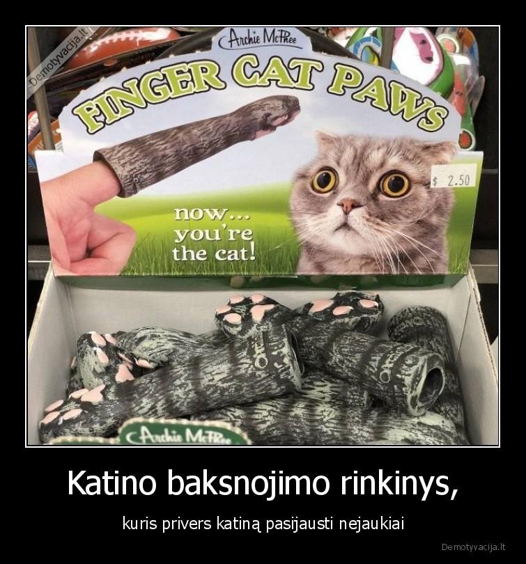 Katino baksnojimo rinkinys kuris privers katina pasijausti nejaukiai