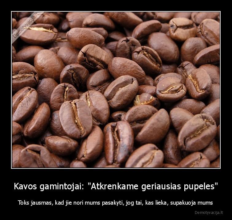Kavos gamintojai Atkrenkame geriausias pupeles Toks jausmas kad jie nori mums pasakyti jog tai kas lieka supakuoja mums