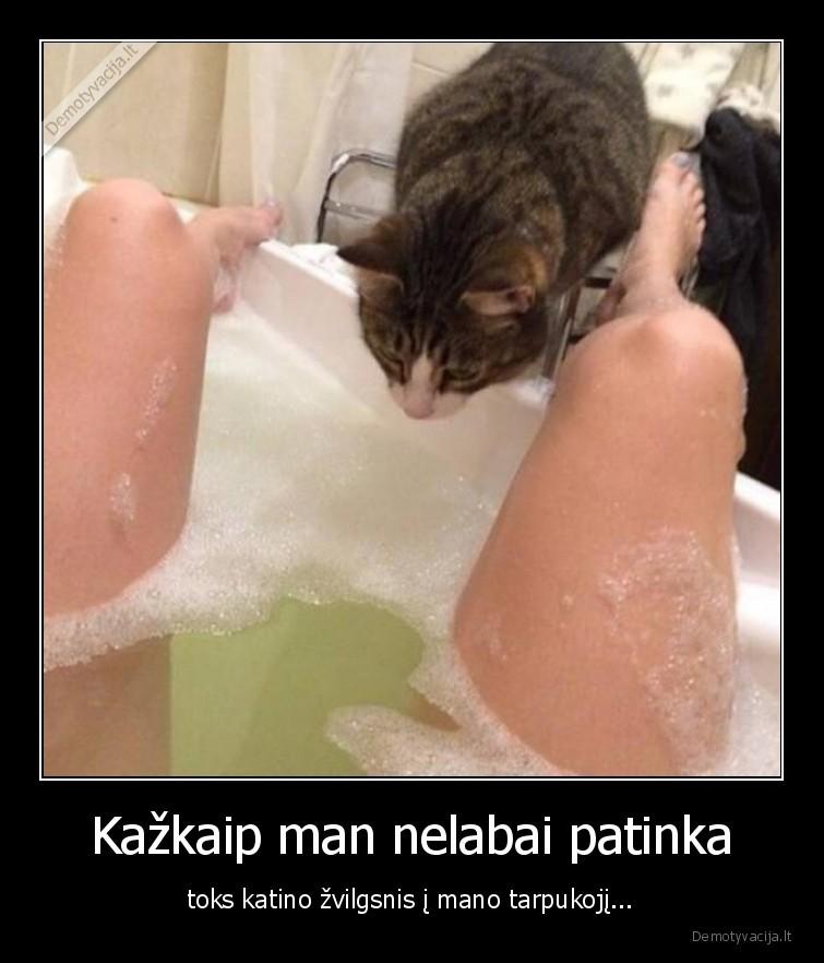 Kazkaip man nelabai patinka toks katino zvilgsnis i mano tarpukoji