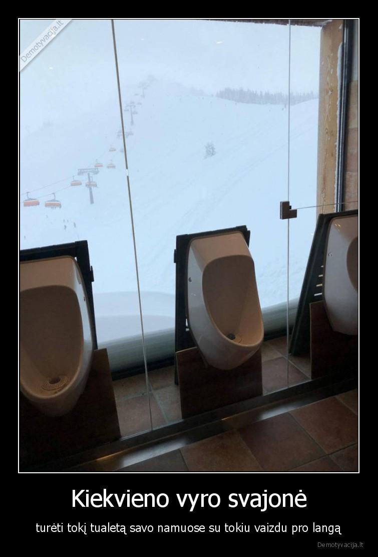 Kiekvieno vyro svajone tureti toki tualeta savo namuose su tokiu vaizdu pro langa