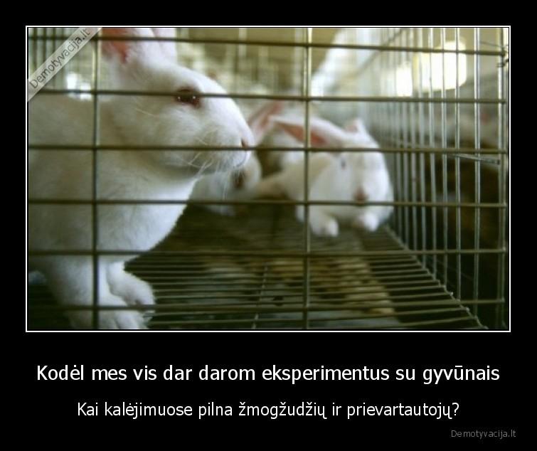 Kodel mes vis dar darom eksperimentus su gyvunais Kai kalejimuose pilna zmogzudziu ir prievartautoju