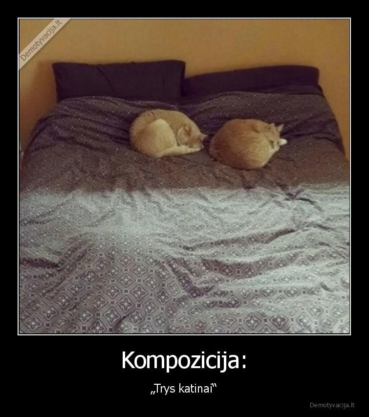 Kompozicija Trys katinai