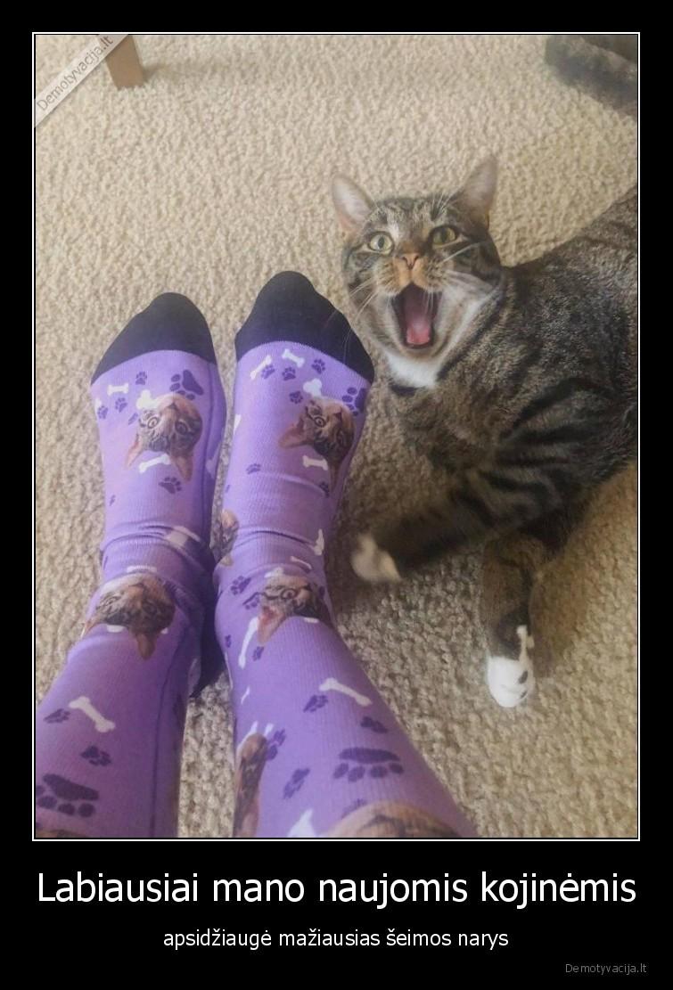 Labiausiai mano naujomis kojinemis apsidziauge maziausias seimos narys