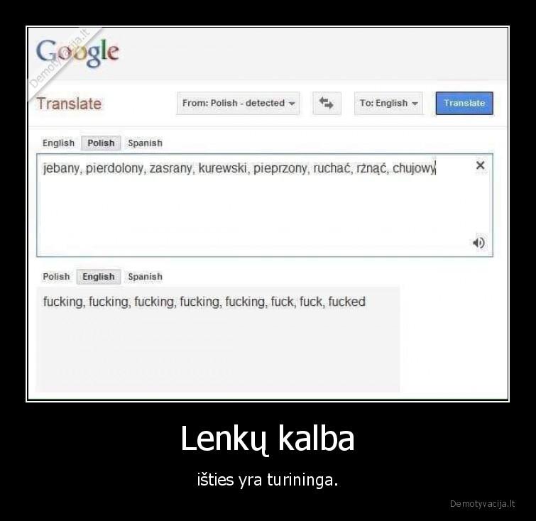 Lenku kalba isties yra turininga