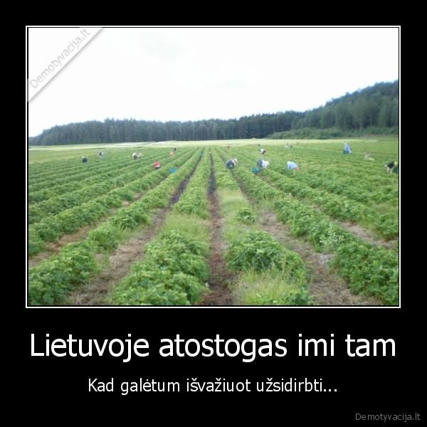 Lietuvoje atostogas imi tam Kad galetum isvaziuot uzsidirbti