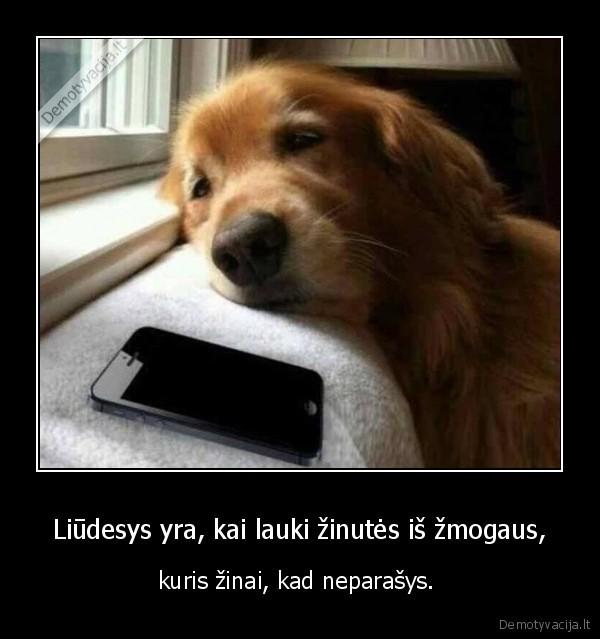 Liūdesys yra, kai lauki žinutės iš žmogaus,..