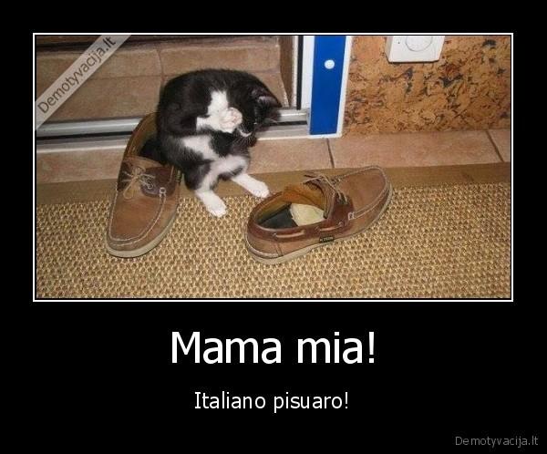 Mama mia Italiano pisuaro