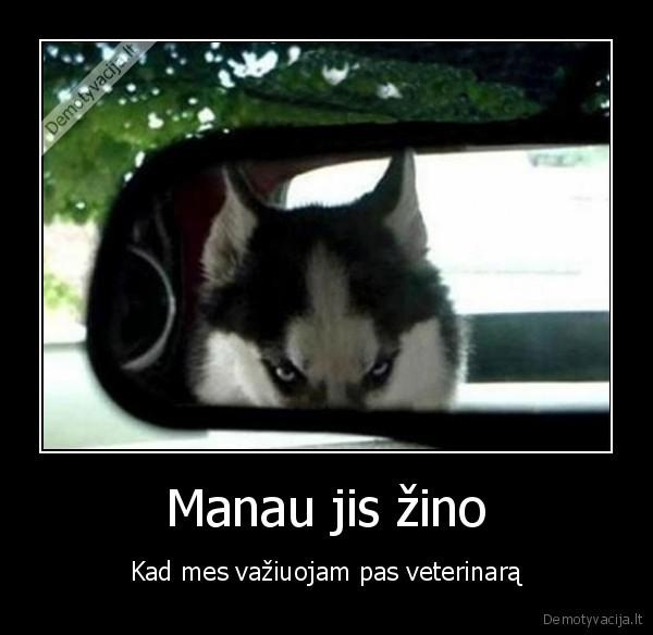 Manau jis zino Kad mes vaziuojam pas veterinara
